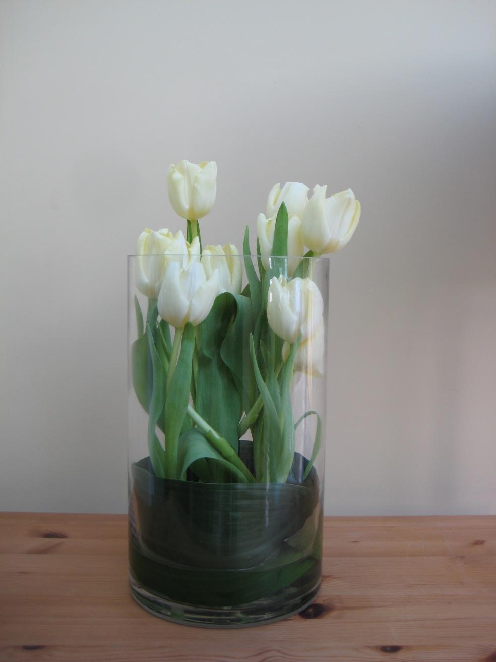 tulipcylinder